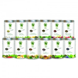 Tea Collection Pack 12 variedades